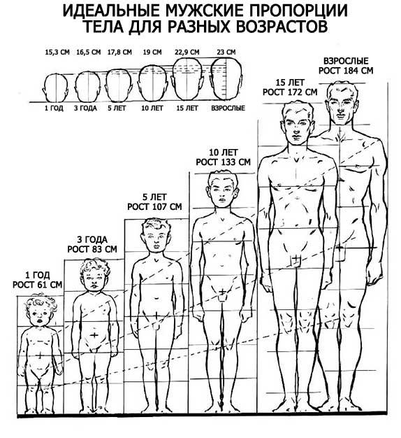 1396503079_idealnoye-muzhskoye-telo