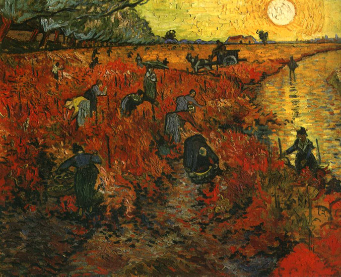 red-vineyard