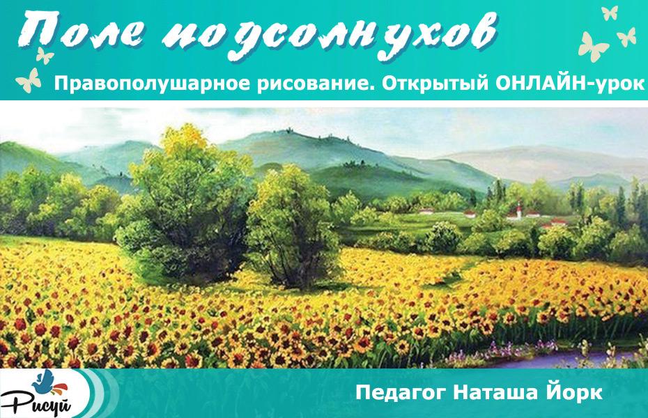 podsolnukhi_3